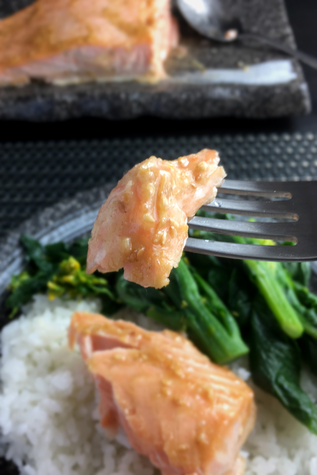 A tasty piece of broiled miso salmon filet on a fork