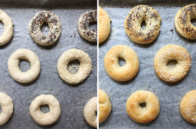 A split image, one side showing uncooked bagels, the other side showing baked homemade bagels
