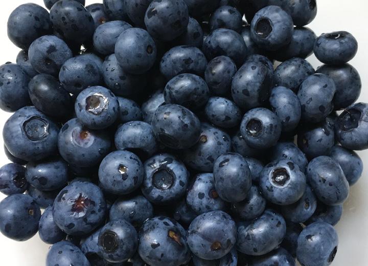 A bowl full of fresh blueberries